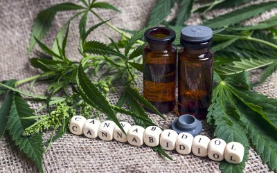 A Healthy Approach: 11 Reasons to Sell Private Label CBD Products