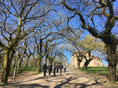 A Walk in Alameda Park