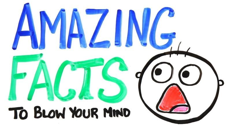 25 AMAZING FACTS ABOUT HUMAN BODY