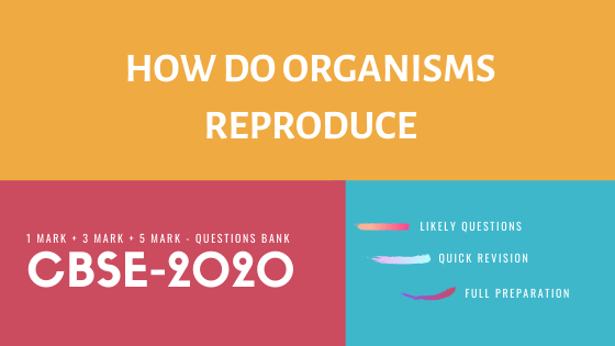 How do Organisms Reproduce