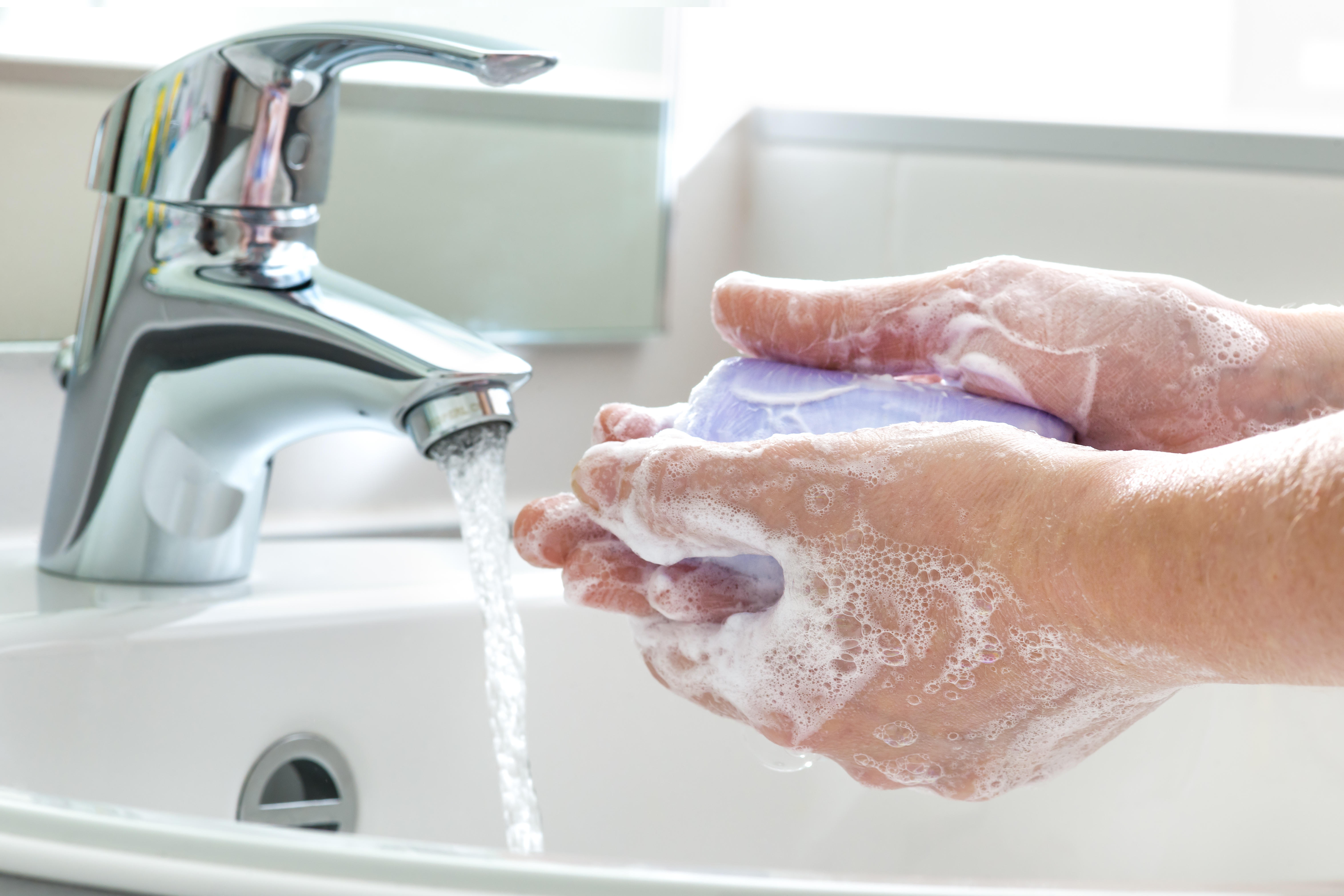 Their Washing Pictures Soap Hands People