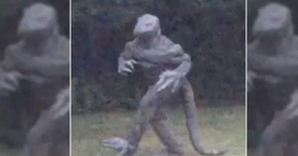 "Legendary ""Lizard Man"" reappears in South Carolina - CBS News"