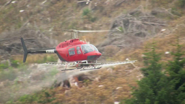 oregon-forests-chemical-spraying-620.jpg