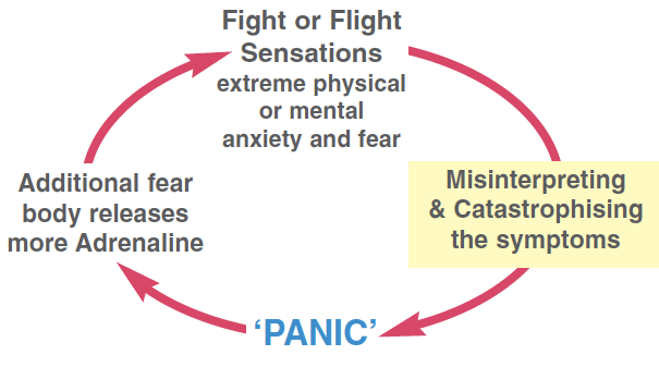 Image result for panic attacks and misinterpretations