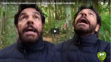 """Photo of VIDEO: Derbez se aterra al estar cerca de unos """"árboles asesinos"""""""