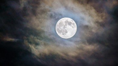"""Photo of No te puedes perder este miércoles la súper """"Luna de Gusano"""", aquí te decimos por qué es tan especial"""