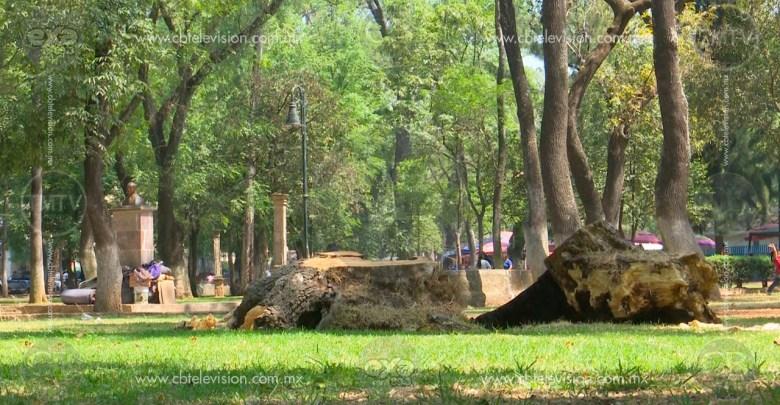 Bosque Cuauhtémoc abandonado por autoridades
