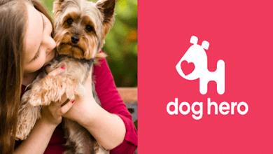 App #DogHero busca encontrar hogar a perritos de la calle