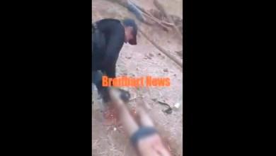 """VIDEO (+18): Sicarios de """"La Familia Michoacana"""" descuartizan y queman a un hombre"""