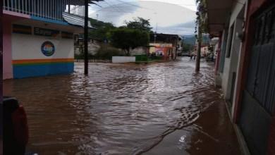 PM y SEDENA apoyan a familias de Coalcomán afectadas por inundaciones