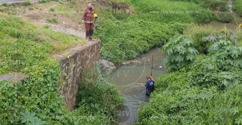 Reportaron bolsas con restos humanos en el río, pero resultó ser basura