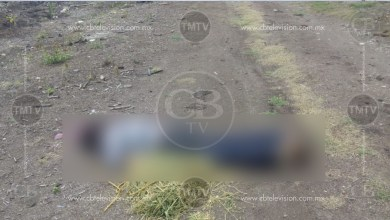 Photo of Cuidaba un Rancho y lo asesina un grupo armado en Buenavista