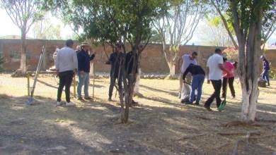 Photo of Vecinos de la Col. Adolfo López Mateos se organizan para restablecer área abandonada