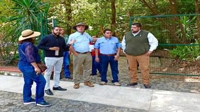 """Photo of Gobierno Municipal, Parque Nacional """"Barranca del Cupatitzio"""" y CONANP dan seguimiento a conservación del área natural"""