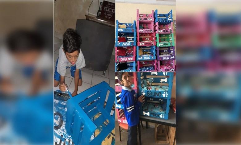 Niño mexicano emprende su propia empresa; fabrica y vende camitas para mascota