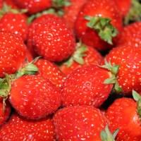 Tiramisu aux  fraises : l'Italie avec des fruits…