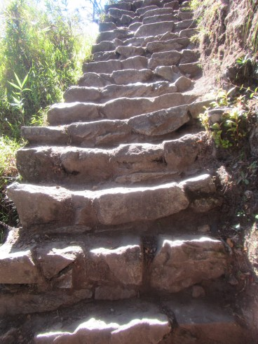 Lots of steps. Everywhere you turned.
