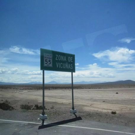 Arequipa.Anden..VikunaSchutzzone