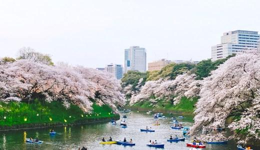 [千鳥ヶ淵]夜桜ライトアップお花見おすすめルート!アクセスや駐車場は?