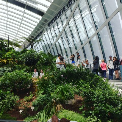 Sky Garden from view 2 down
