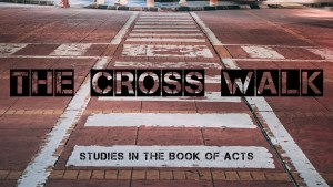 The Cross Walk