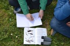 Un dos CCI´s collendo información da guía de aves para o seu caderno de campo