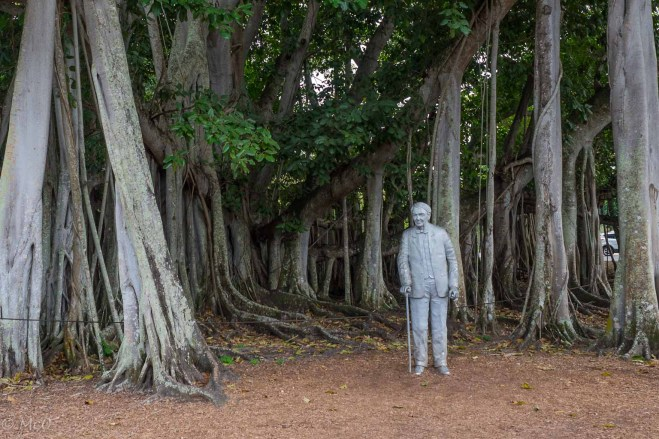 Winter home of Tomas Edison, Cypress Tree Garden