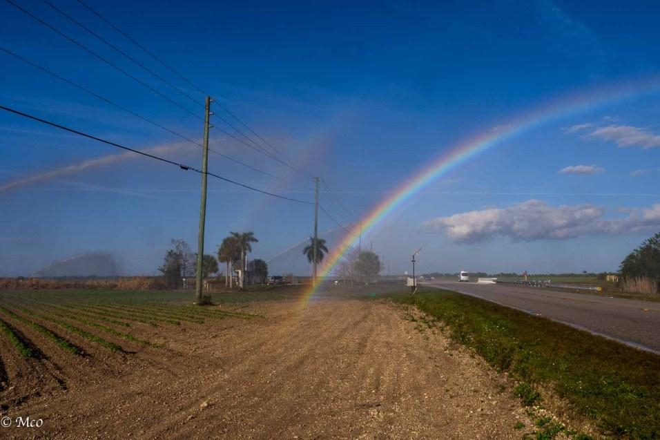 Rainbow through spray