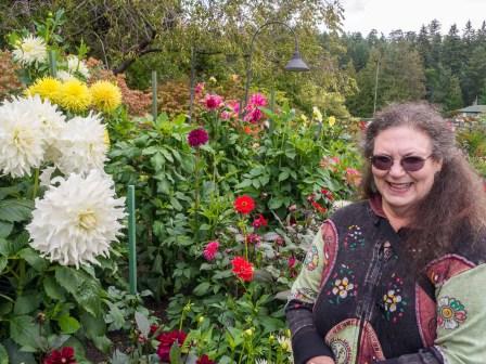 Face-size dahlia blooms