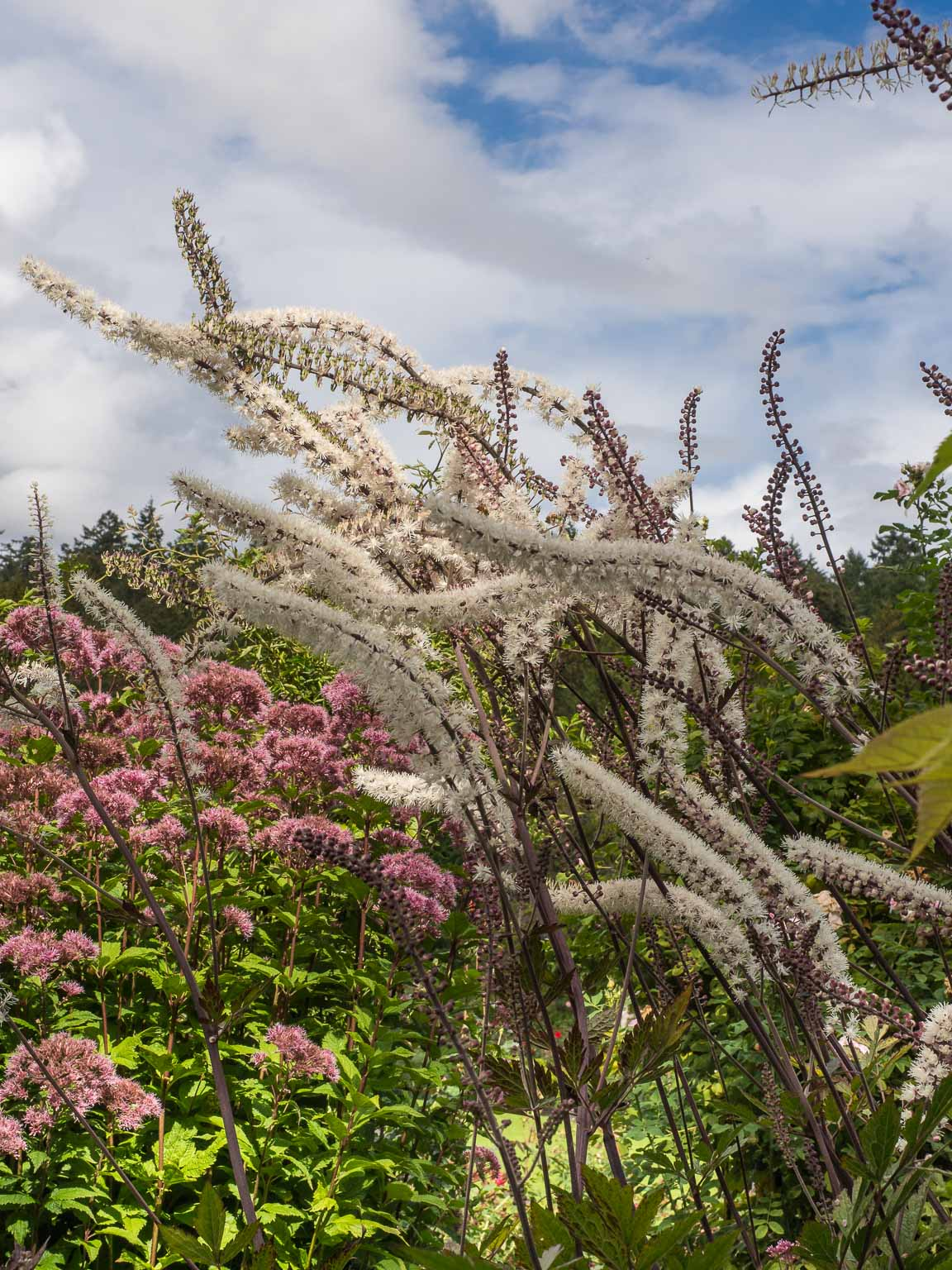 Butchart Gardens, Vancouver Island – Mick Mac Travels