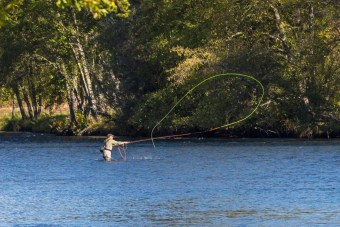 Fly Fishing on the Rogue River