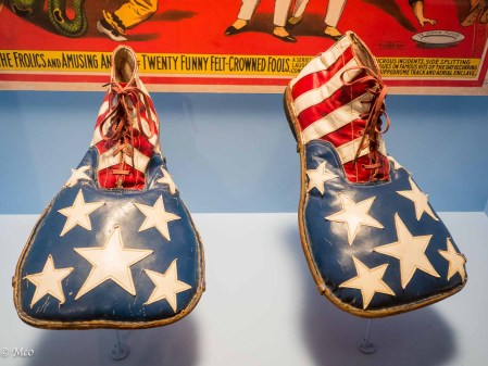 Circus clown shoes