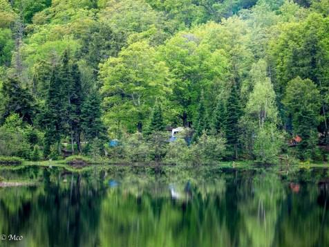 Beaver Lake, MI