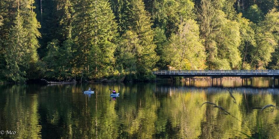 Lake Sylvia, WA