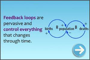 Feedback Loops diagram