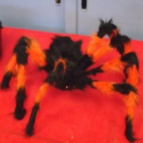 HalloweenP12018 (8)