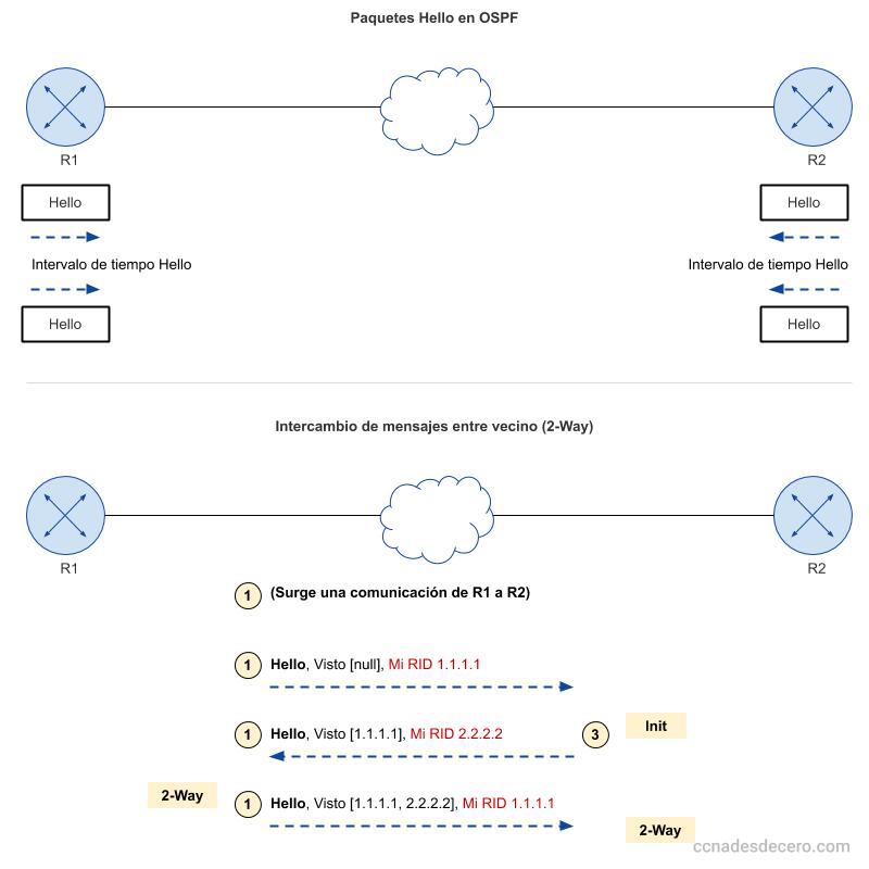 Intercambio de paquetes Hello en OSPF