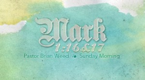mark_1_16-17_brian_weed