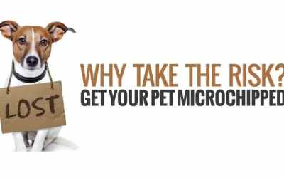 REMINDER: Keep your pet's microchip info up to date