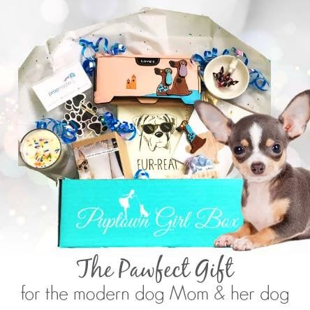 Puptown Girl Box March 2017 Proceeds to CCRT