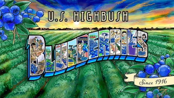 Highbush Blueberries Old Fashioned Ad