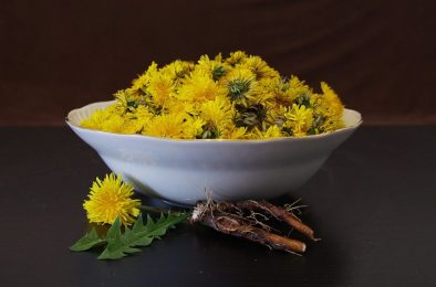 Bowl of Dandelion flowers next to a single flower and leaves and roots.