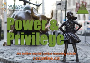 Power and Privilege online learning circle