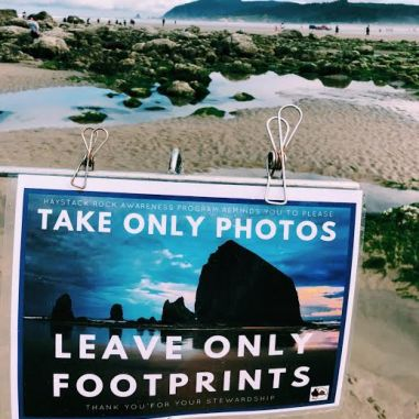 leave only footprints sign