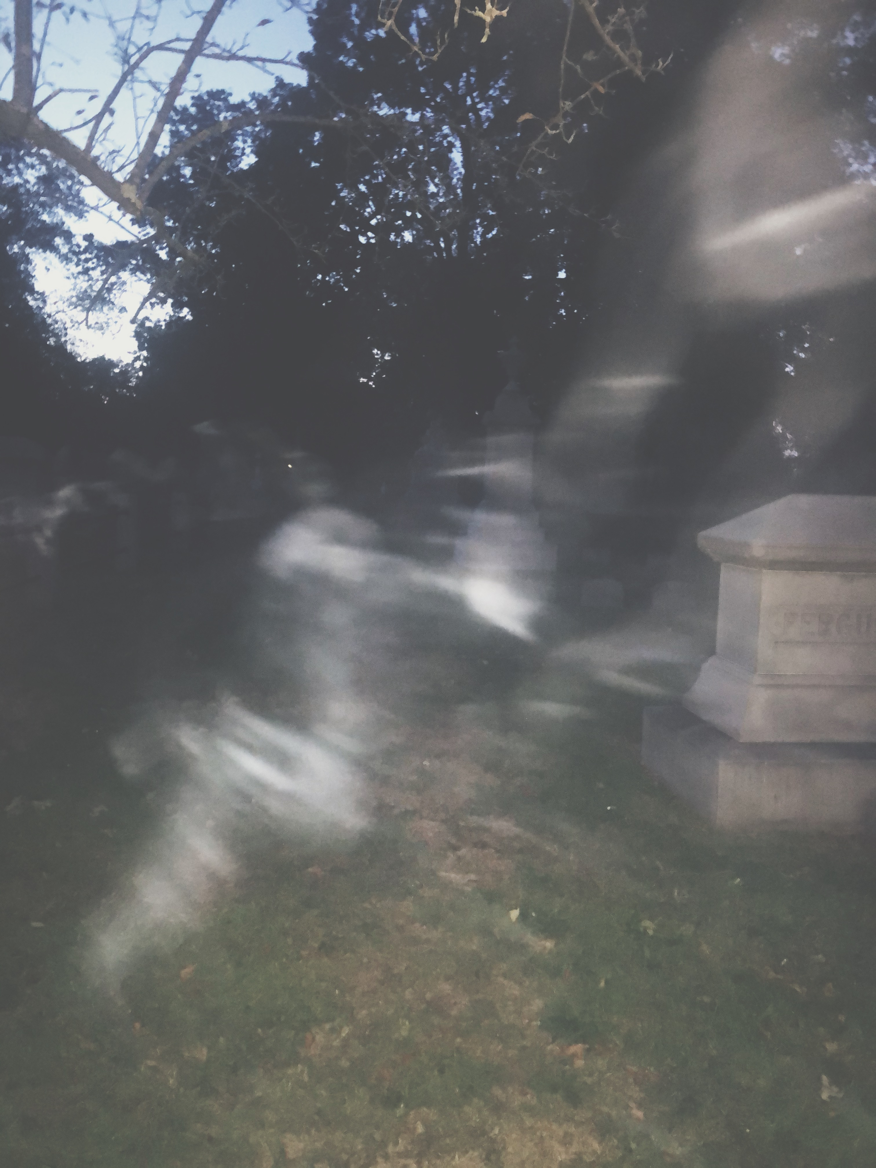 A Haunting in Connecticut (the blog)