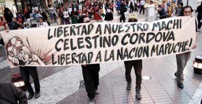 Apoyo a machi Clestino C.
