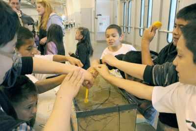 Children's Water Festival