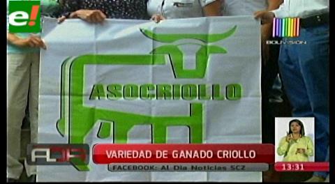 Se conforma Asociación de Criadores de Ganado Criollo Bovino a nivel Latinoamérica