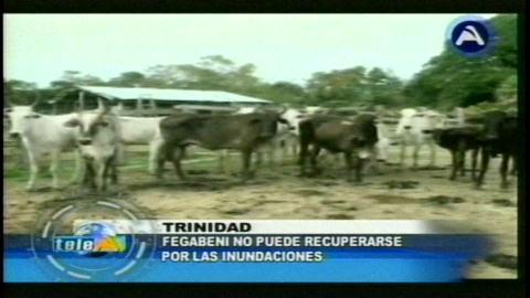 Inundaciones: Fegabeni no puede recuperarse económicamente