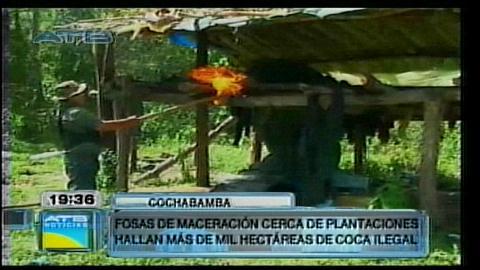 Helicóptero detecta al menos 1.000 hectáreas de coca ilegal en el Tipnis